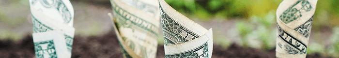 Pénzvisszafizetési garancia