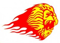 Ablak matrica Lion 001 - yellow/red (0014)